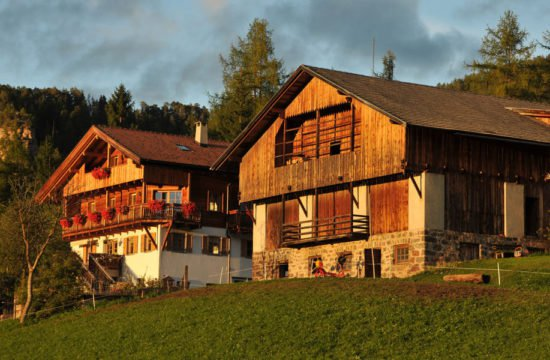 Verlotthof in St.Magdalena - Villnoess (32)